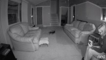 jan2016-nest-cam-3