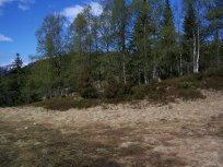 Njøs-Fadnastølen-076