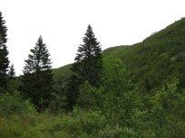 Huksdalen-062