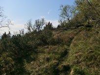 Utsiktspunkt nær Kyrafossen 009
