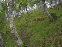Bergsete opp Kvannaskard-029