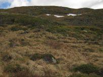 Bergsete opp Kvannaskard-048