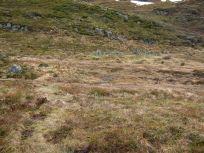 Bergsete opp Kvannaskard-049