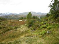 Kløvjavegen-Fjærlandsete-041