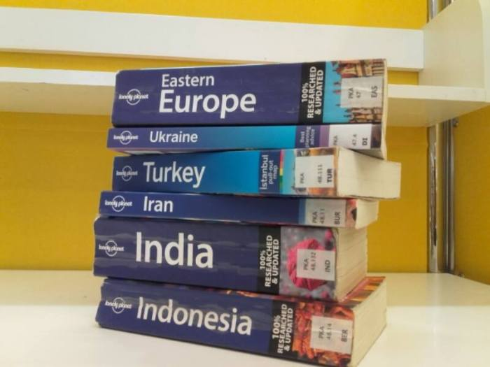 A pile of Lonely Planet guidebooks. Preparing for long-term travel may demand more research.