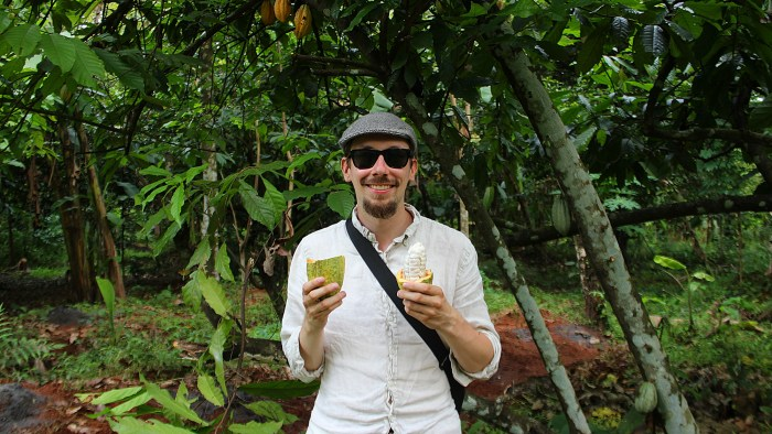Tourist visiting Kerala during the monsoon season holding and tasting a fresh cacao fruit from a tree.