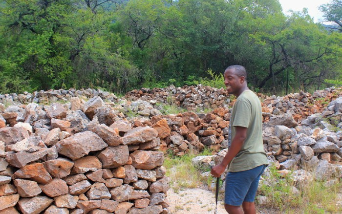 Piles of sorted rocks with fossils from Makapansgat Limeworks waiting to be excavated.