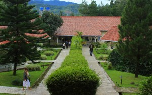 Meditation for travel. Dhamma Java in Bogor, Indonesia