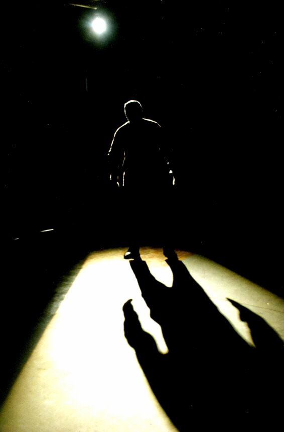 shadow-in-the-dark