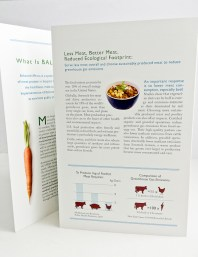 healthy food brochure for Physicans for Social Responsibility