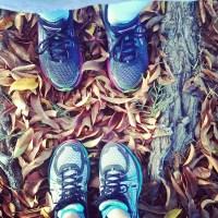 PF Chang's Marathon Training Week 5