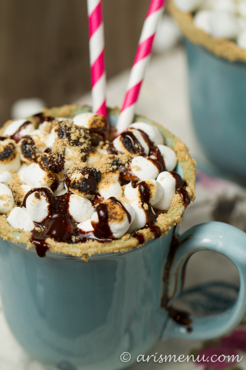 S'mores Hot Cocoa: lightened up, gluten-free & dairy-free