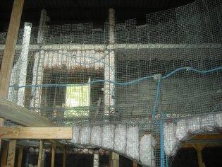 constructiondscf0503