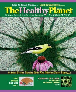 Healthy Planet July 2017 – Sim Van der Ryn