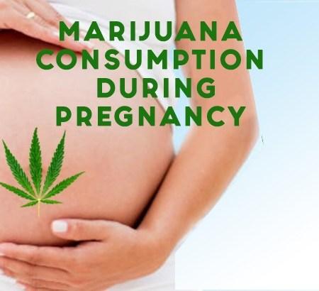 marijuana consumption during pregnancy