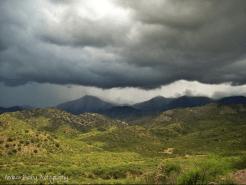 Andrea Busby | Mt Lemmon