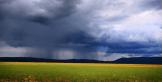 Paul Folk | Mormon Lake
