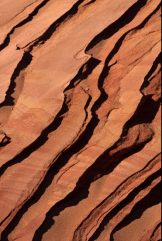 Paul Sawyer | South Coyote Buttes