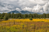 Kathleen Wasselle Croft | Flagstaff