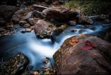 Annie Vargas | Horton Creek