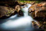 Bill Cantey | Horton Creek