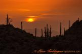 Glenn Tamblingson | Near Tucson