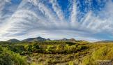 Reid Helms | Spur Cross Ranch