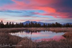 Jake Case | Kachina Wetlands
