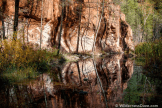 David Creech | Oak Creek