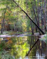 John Morey Photography | Horton Creek