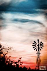 Sandy Klewicki | Greasewood Flats