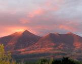 Sara Zsenai | Flagstaff