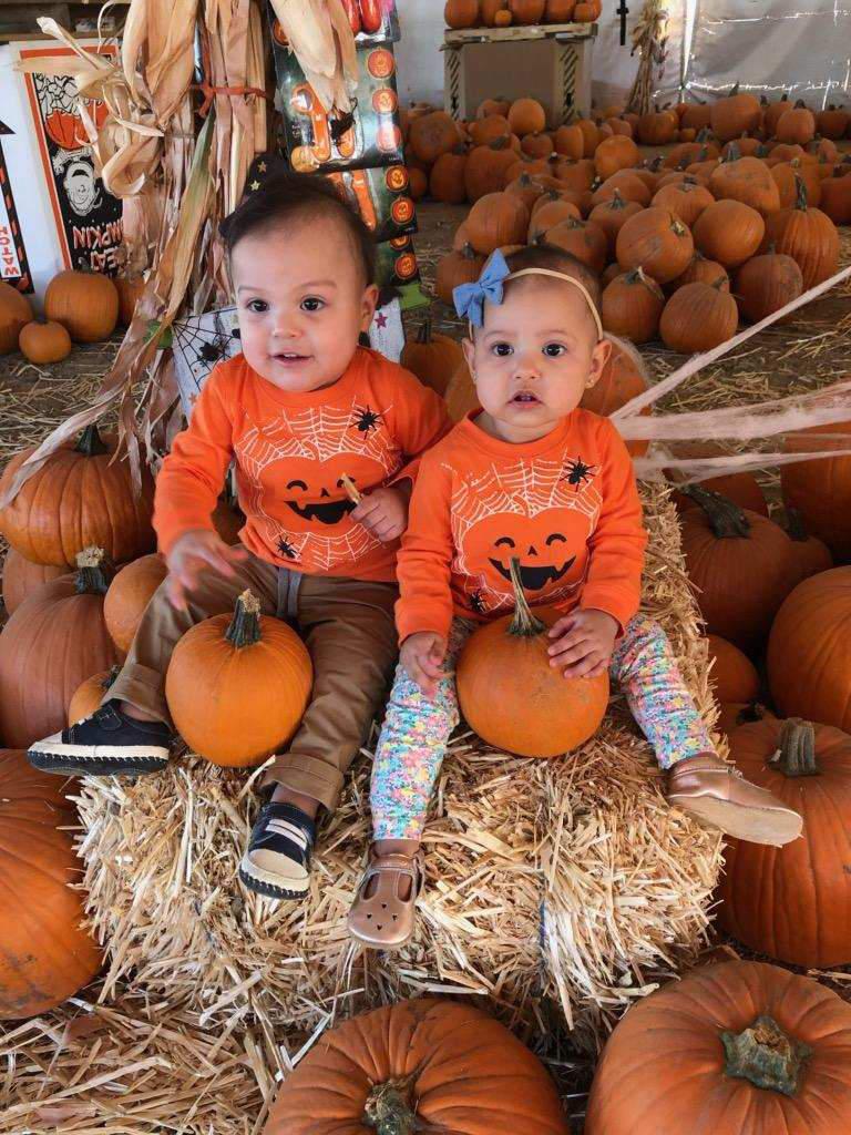 Queen Creek Pumpkins