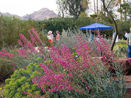 garden_tour_house_4.jpg
