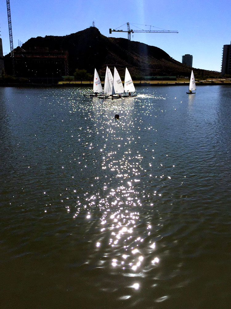 Lasers cluster for close racing at Tempe Town Lake as a flock of cranes watch. Photo: Mike Ferring