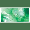 Poster oriental-floral-vert