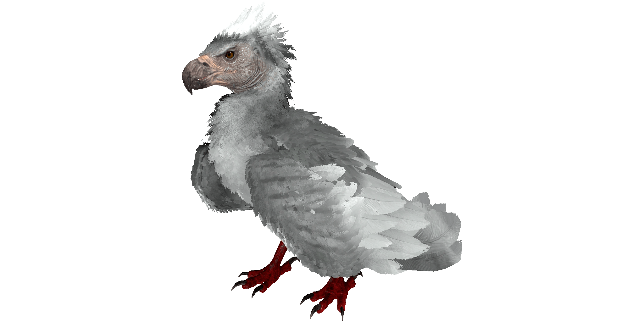 Argentavis Official ARK Survival Evolved Wiki