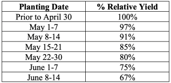 average percent relative yields for each week in May at Marianna from planting date studies
