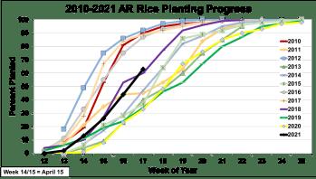 AR Rice Planting Progress