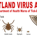 Case of Heartland Virus Found in Arkansas Resident