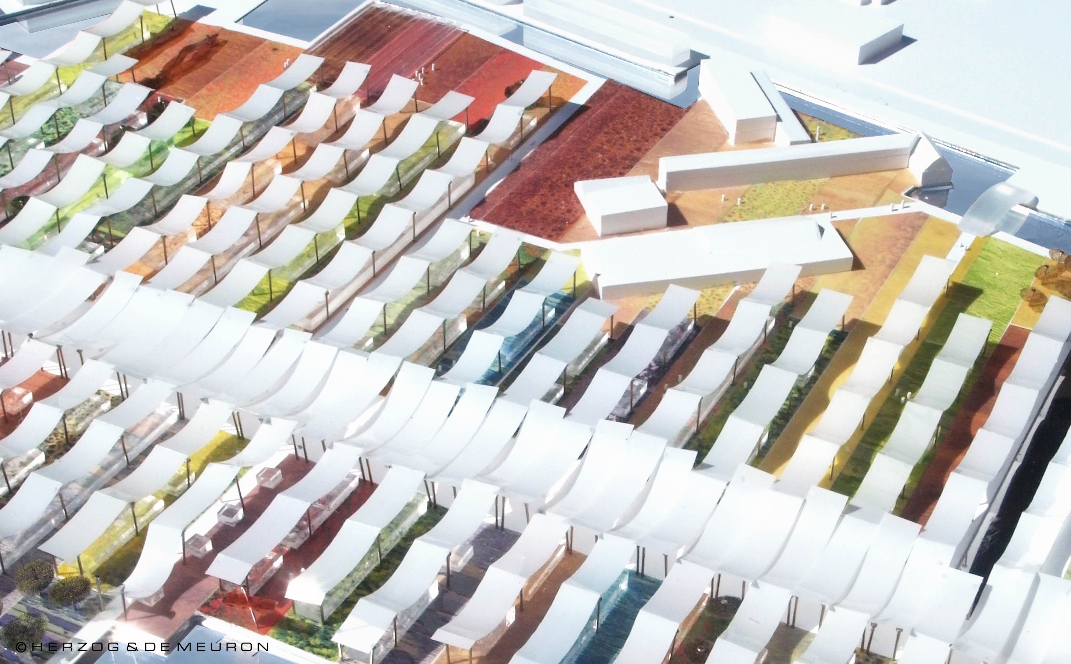 Close-up of the boulevard, 'strips' and shade sails, Expo Milan 2015 (Courtesy of Herzog & de Meuron)