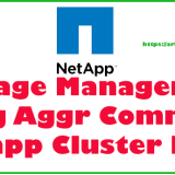 15 aggr command Netapp cluster mode practical examples