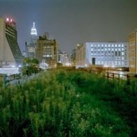 High Line: a linear garden crossing New York