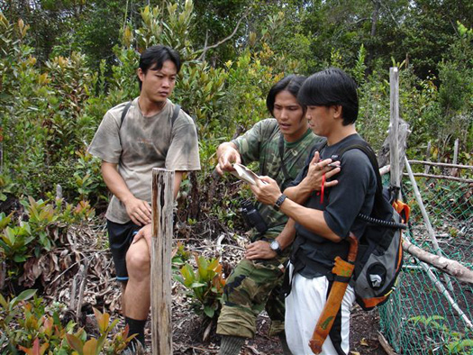Maliau Rangers compare notes on 'The Birds of Borneo'