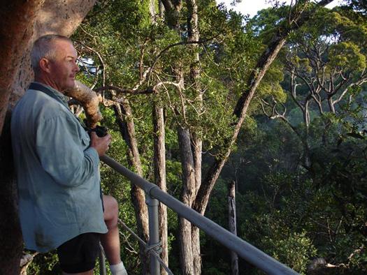 Camel Trophy Camp tree platform