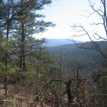 View of Ross Hollow Valley from Mount Magazine Trail