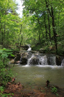 Glory Hole Falls Trail (Ozark Forest) - 2 mi (o&b) photo