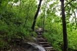 Hemmed-in Hollow Falls Trail (Buffalo River)  - 5mi (o&b) photo