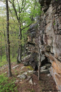 Lonesome Hollow Falls (Ozark Forest) photo