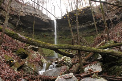 Highway 123 Falls (Ozark Forest) photo